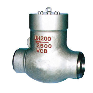 Cast Steel Pressure Sealed Swing Check Valve